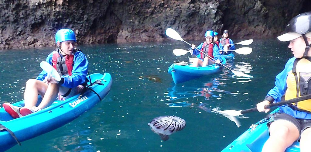 Channel Islands Kayaking Tours Explore The National Park